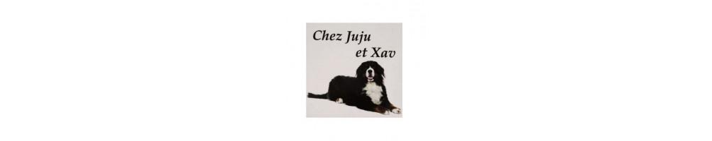 Plaque Photo Animal personnalisée