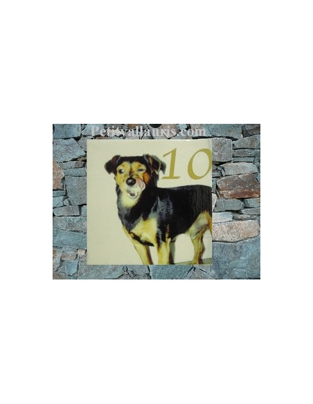 Plaque en céramique 15x15 cm personnalisable avec photo de mon animal (n°1)