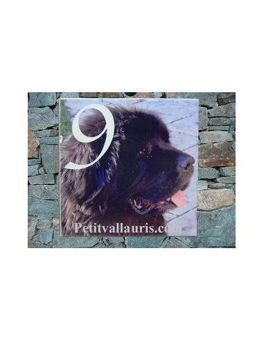 Plaque en céramique personnalisable avec photo de mon animal (n°4)