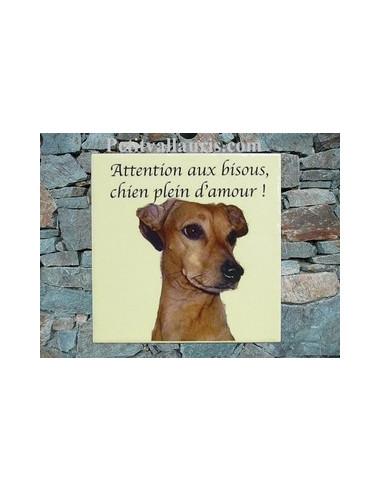 Plaque en céramique personnalisable avec photo de mon animal (n°5)