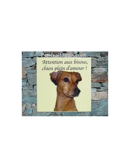 Plaque en céramique 15x15 cm personnalisable avec photo de mon animal (n°5)