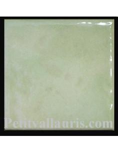 Carrelage brut vert clair uni 10 x 10 cm