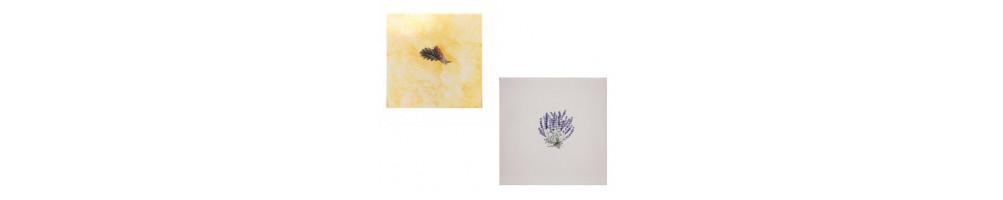 décors sur carreaux en faience 20 x 20 cm